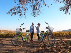 Two ladies with bikes laughing and enjoying themselves in the vineyards of the central valley which is a year round destination